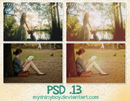PSD .13 by MyShinyBoy