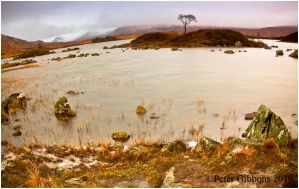 Rannoch Moor 2 by Photo-Joker