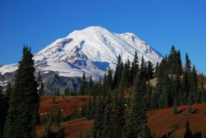 Fall Colors and Rainier by sgwizdak