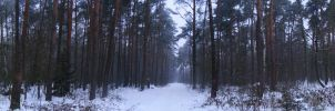 winter. panorama by Effondre