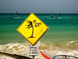 Tropical Wind by Xfluegge