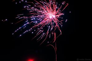 Red Sparkling.  by mortenthoms