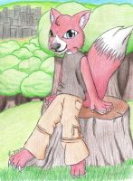 Red Fox anthro x3 by Poo7878
