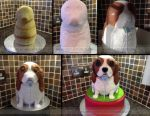 King Charles Cake stages by ginas-cakes