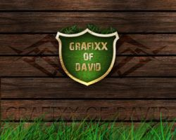 Logotype - Grafixx-of-David by termi1992