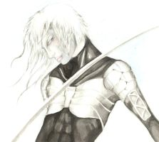It's...RAIDEN by Inky-la-reve
