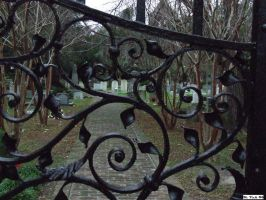 Through the Cemetary Gates by crusader866