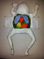 Korky the dissection frog by YoJo1991