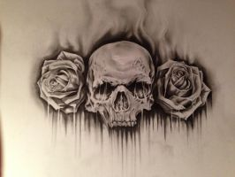 SkullRoses by anoneison