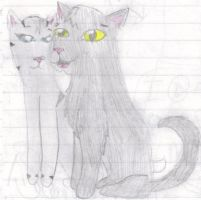 Graystripe and Silverstream by TheMusesSong