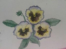 Ink and Watercolor Pansy  by steffy0075