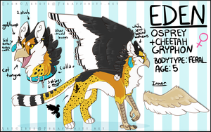 [Commission] Eden Reference Sheet ||ART NOT BY ME| by Aeyote