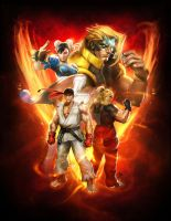 Street Fighter V Strategy Guide by Dave-Wilkins