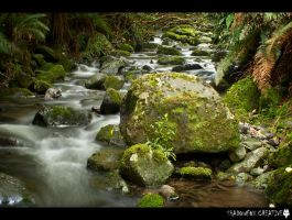 Lindsay creek 7 by shadowfoxcreative
