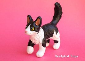 Bella kitty commission by SculptedPups