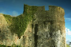 Ivy Bastion by EarthHart