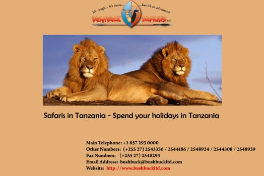 Safaris in Tanzania - Spend your holidays by Bushbucksafaris