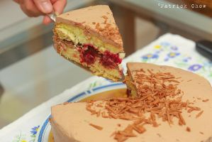 Genoise cake 3 by patchow