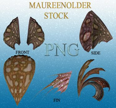 STOCK PNG brownheadpeices by MaureenOlder