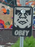 OBEY by LittleWhiteWolf
