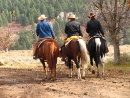 Cowboys 130 .:Stock:. by WesternStock