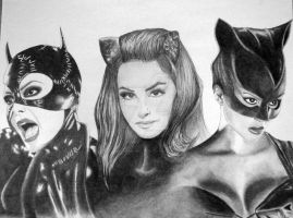 Catwoman Generations by jonathan-hillmer