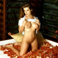 bed of flowers 2 by markdaughn
