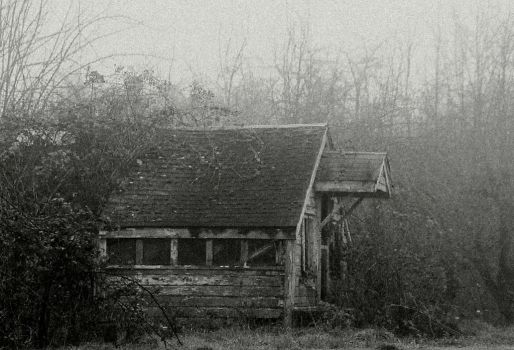 Condemned... by thewolfcreek
