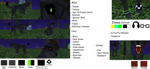 Alix - Reference Sheet by WolvorineCed