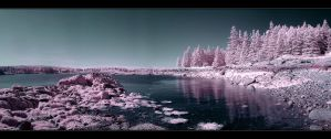 Discovery Of Planet Pink by IngoSchobert