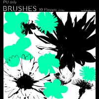 Photoshop Brushes - Flowers by IsaaaHa