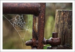 The Gate by SnapperRod