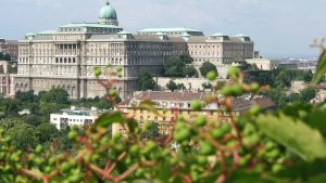Buda Castle by smack1289