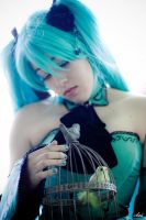Trapped Bird - Cantarella by Lynah