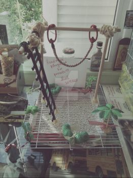 Handmade playground for parrots~ by MissVeronici