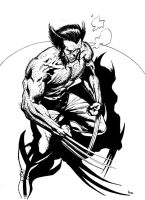 Wolverine - inking trial 1 by Av3r