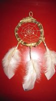 Eco Dream web on red background by Arachnoid