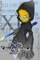 My XIII order Character... by Darksydaz