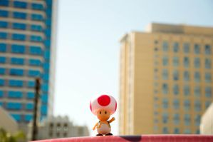 Toad in the big city by ZAvila17