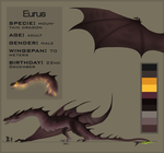Eurus reference sheet -2015- by GoldenNove