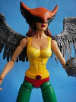 Custom 12 inch Hawkgirl by cusT0M
