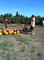People in the Pumpkin Patch by WillowTreeWitch