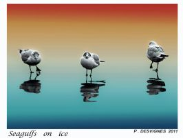 seagulfs on ice by bracketting94