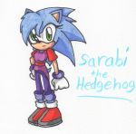 Sarabi the Hedgehog (Shaded) by Piplup88908