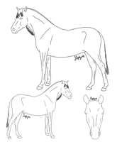 Free Reference-Style Lineart by Zephyrra