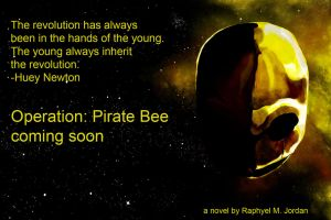 Operation-Pirate-Bee-Ad-8 by rmj7