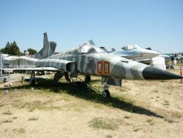 Northrop F-5E Tiger II by RoadTripDog