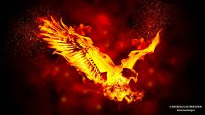 The Burning Eagle - The Burning Fire Series by SherineSSDesigns