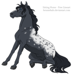 Adoptable Appaloosa CLOSED by Blacksheep28