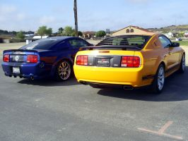 Mustang Boss 302 like Mach 1 by Partywave